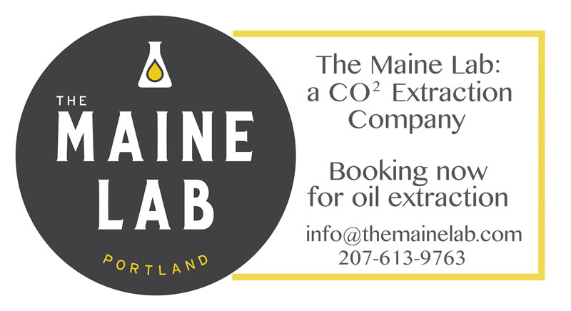 maine lab ad2