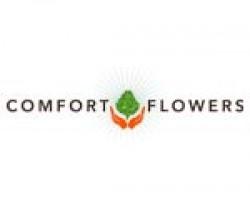 Comfort Flowers