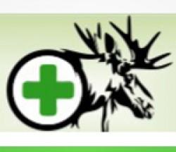 MOOSEHEAD MEDICINE LLC